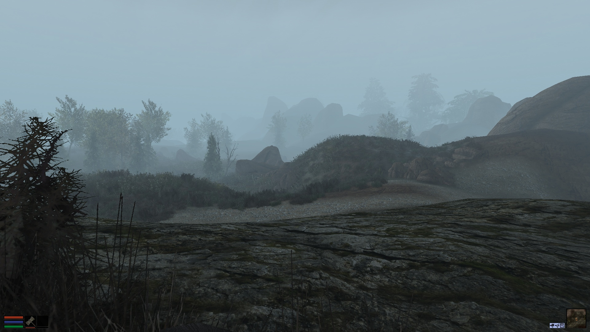 A foggy day in the West Gash