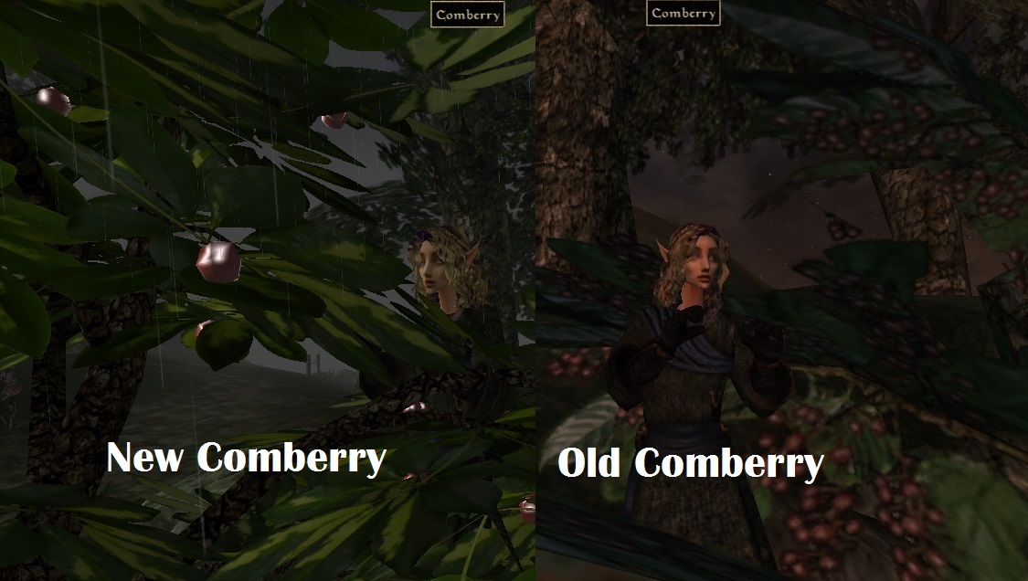 Comberry comparison using Pherims replacer