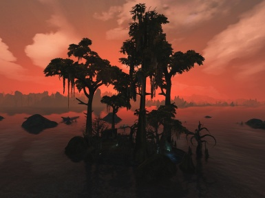 Bitter Coast swamps