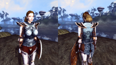 The final version of DMRA imperial silver cuirass