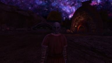 Morrowind Night