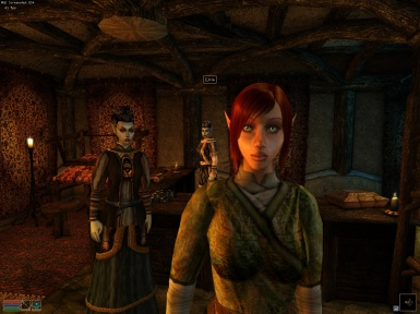 Morrowind Elves