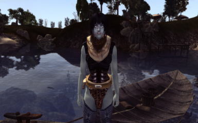 New to Morrowind