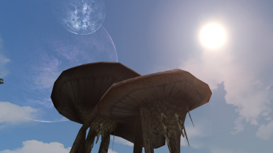 Sun Moons and the Mushrooms