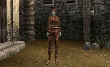 Making of Vvardenfell Clothes