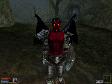 My New Morrowind  Custom Character