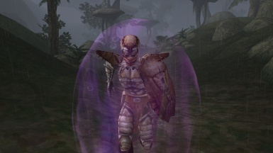 Chitin Armor in the Ascadian Isles