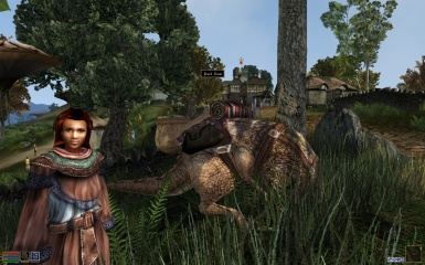 Merchant and pack guar