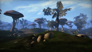Remiros' Groundcover WIP - Ascadian Isles