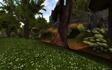 Landscape of Morrowind part 25