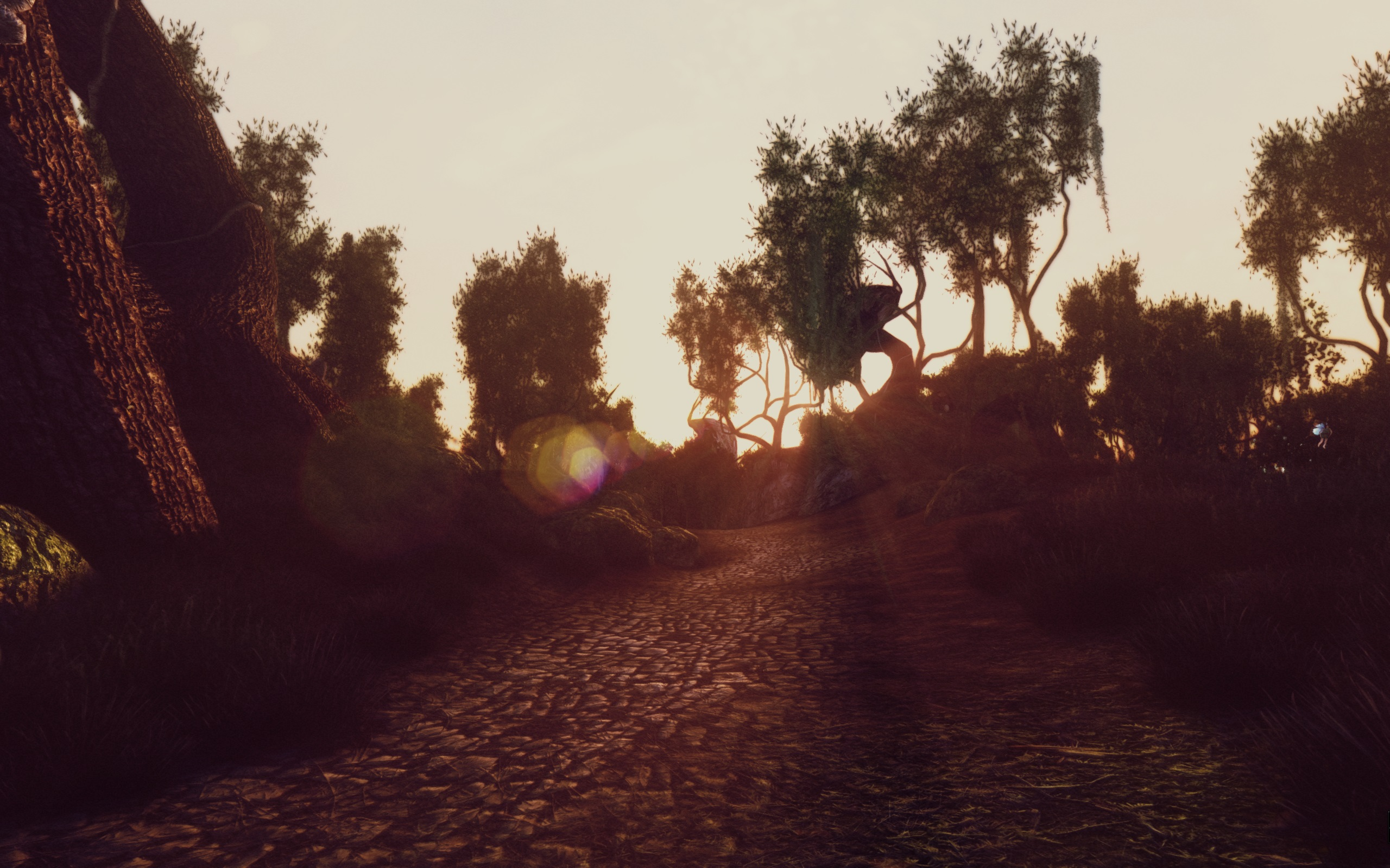 A Tweaked ENB in SI