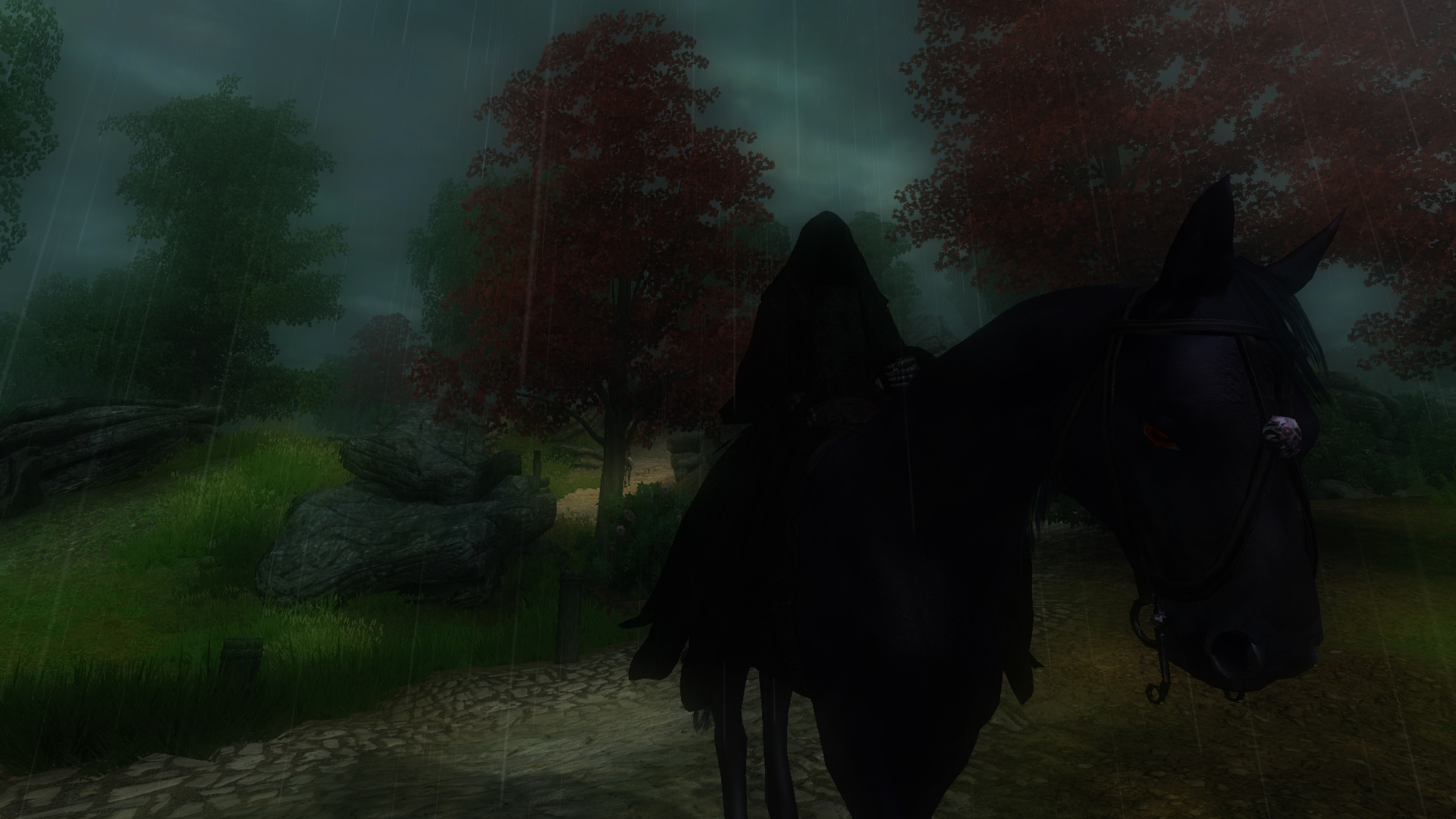 Dark Rider in the Rain