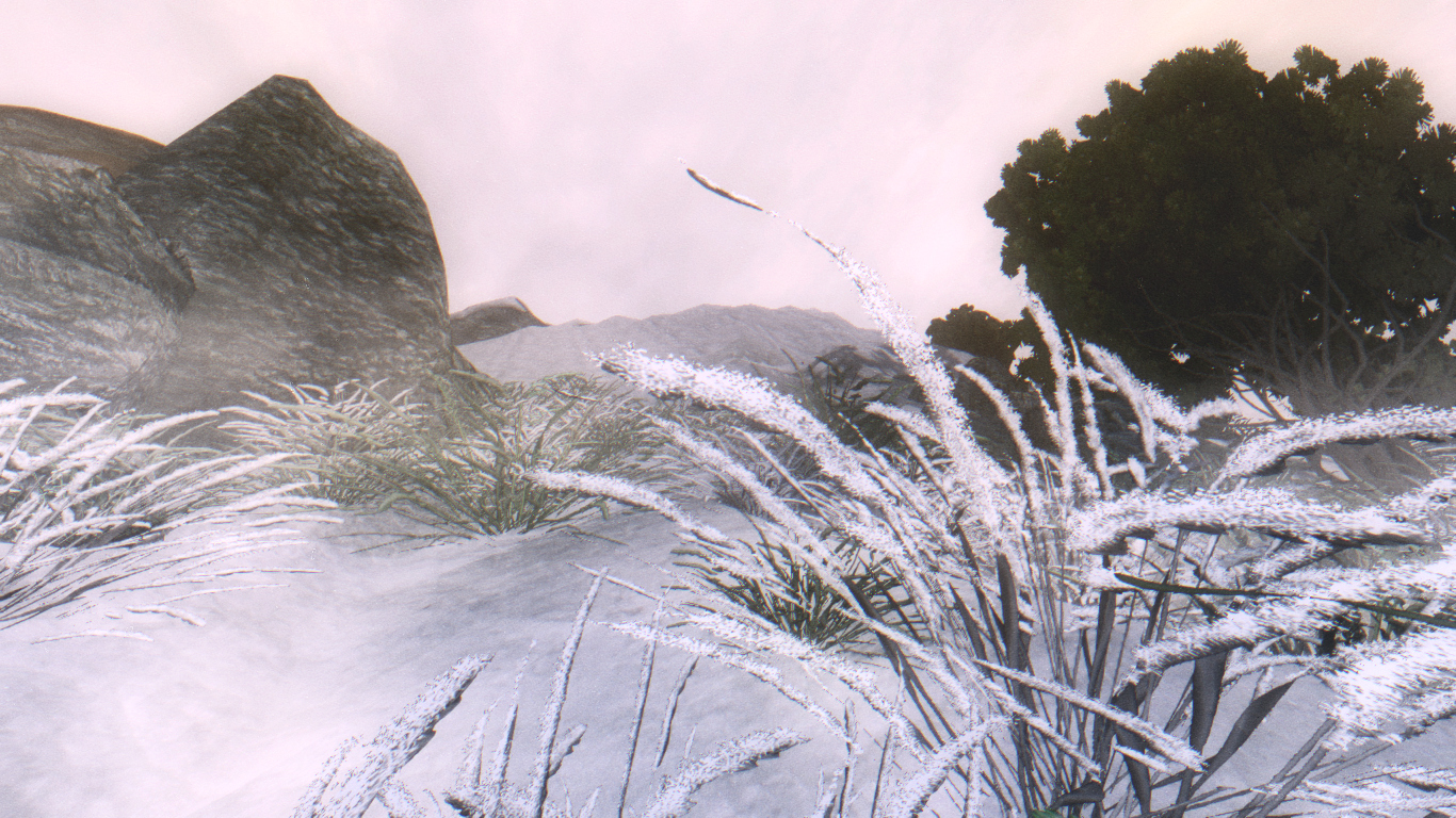 Imperial grass