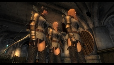 Defenders of Kvatch
