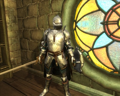 knight protector