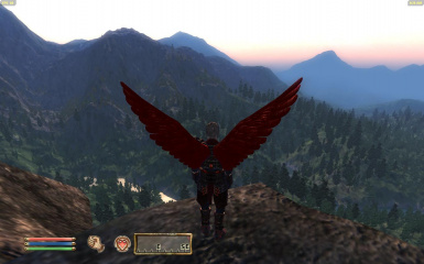 An Angels View 2