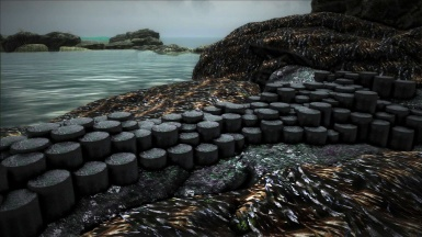 basalt extrusions and sea weed covered rocks