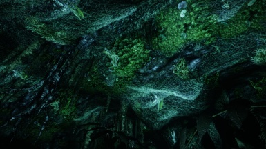 Deep in Cave