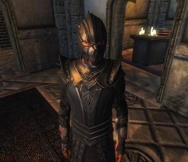 Elite Guards Armor