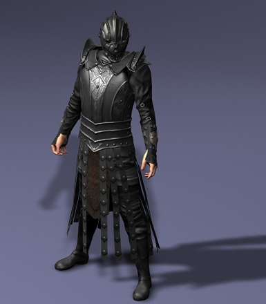 Elite Guards Armor 3DS