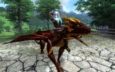 A Rider And Her Dragon
