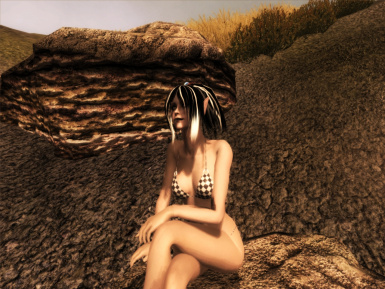 Eryph relax on the beach
