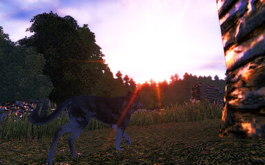 Dog in Mystical Sunset