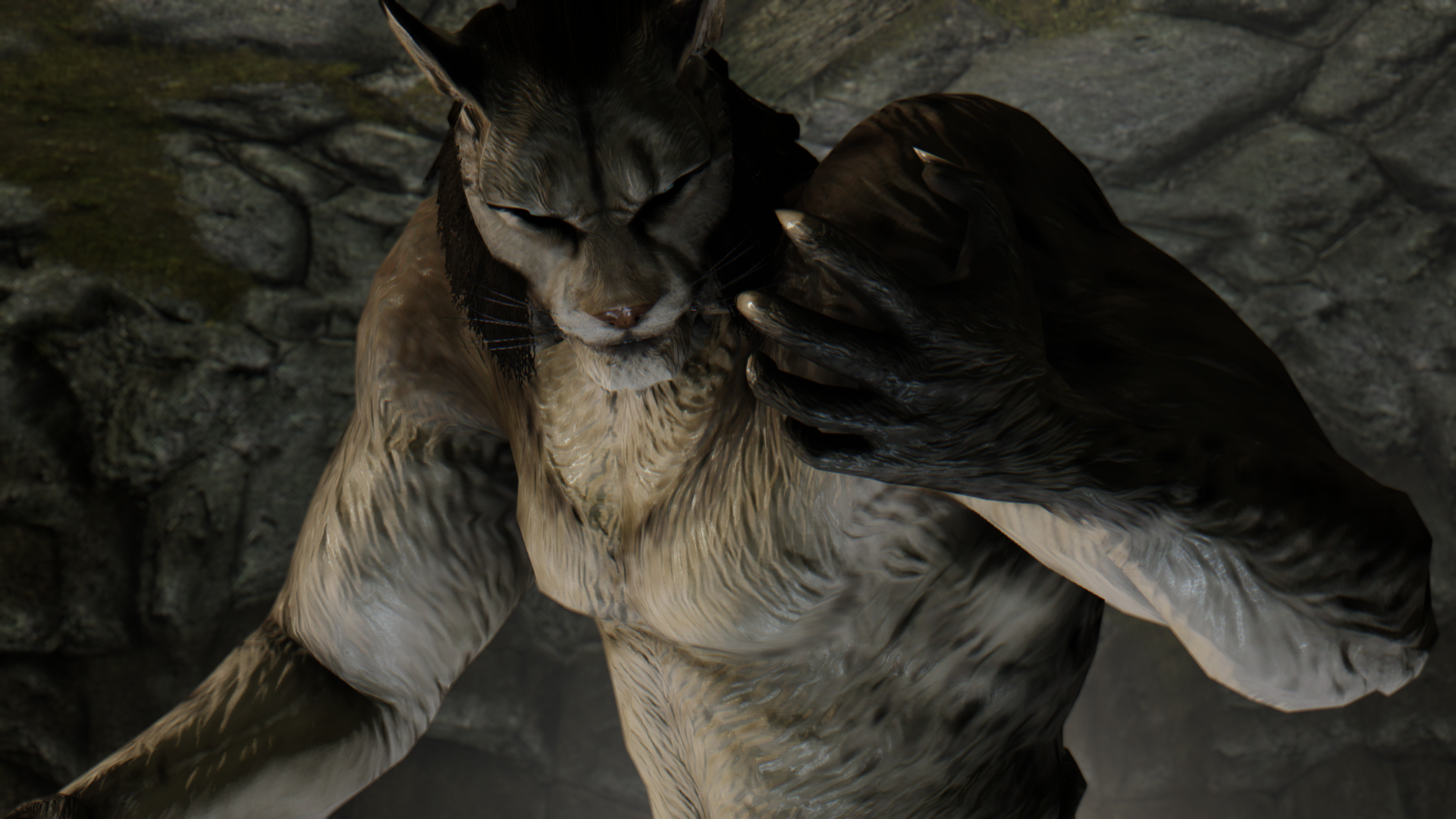 how to get mods to show up in skyrim