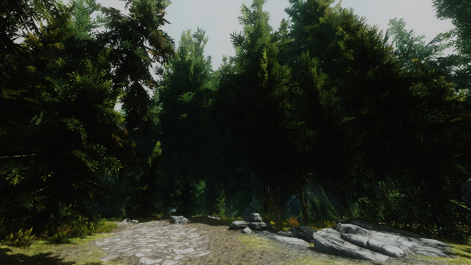 Bigger Trees Mod is Awesome at Skyrim Nexus - mods and community