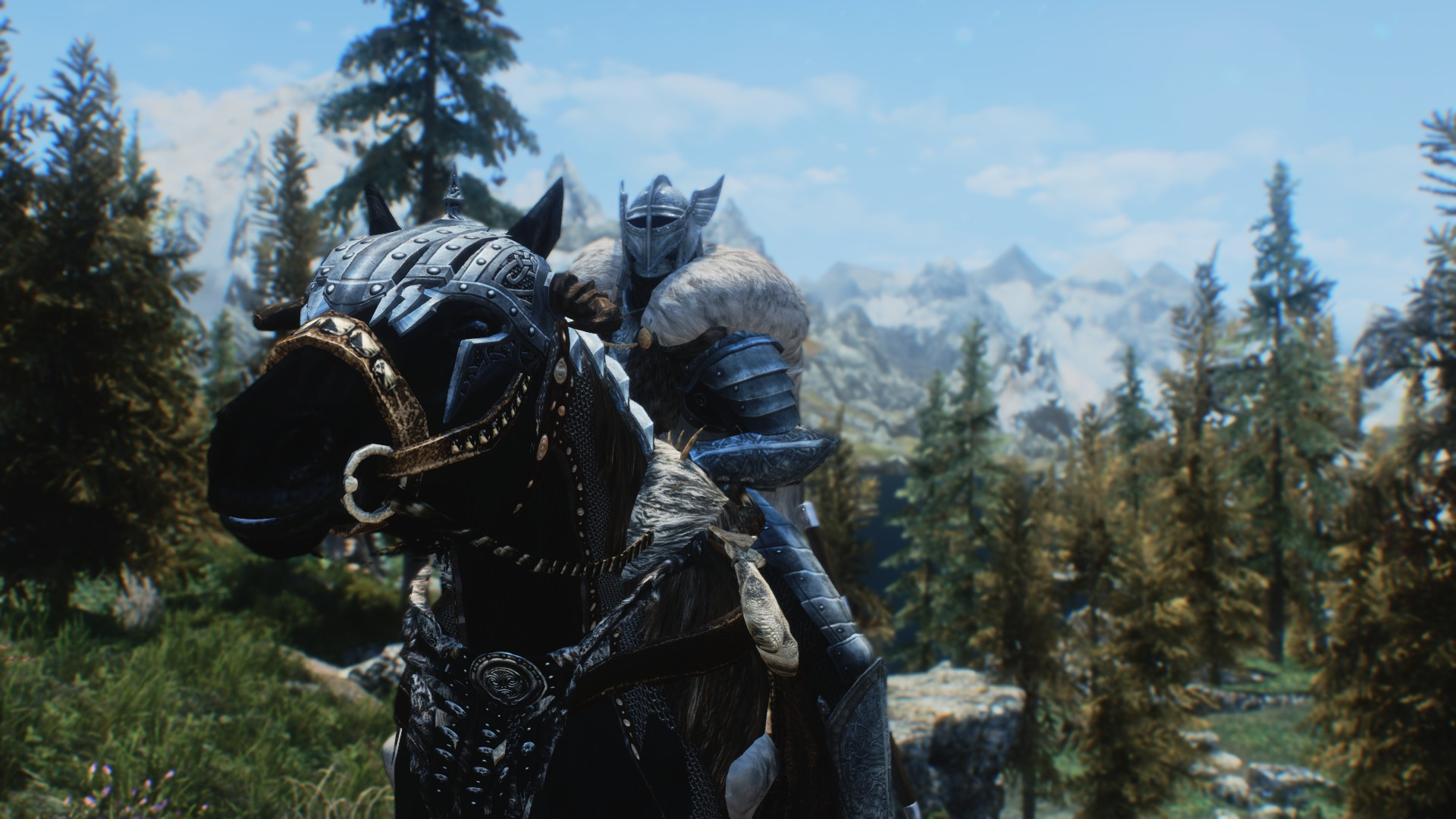 Mounted Nord