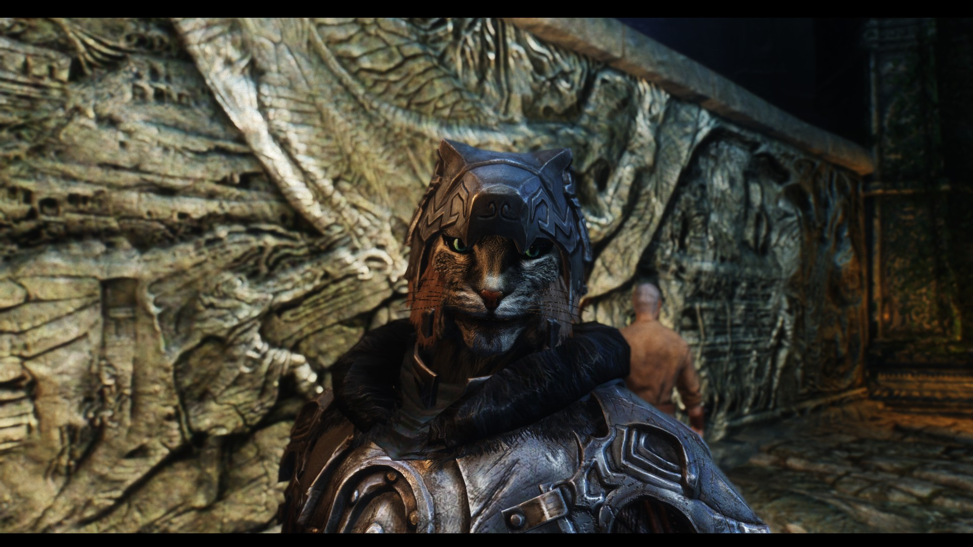 Kharjo at Alduin's Wall