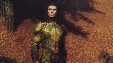 Bosmer Ceremonial Armor - Male WIP