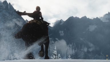 Riding horse with cape physics