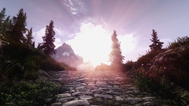 My Skyrim Nature Part XIX - Windhelm South