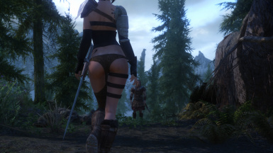 On the road from Helgen