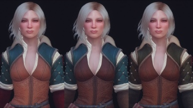 Witcher 3 retexture previews