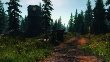 Western Watch Tower In The Grassy Forest