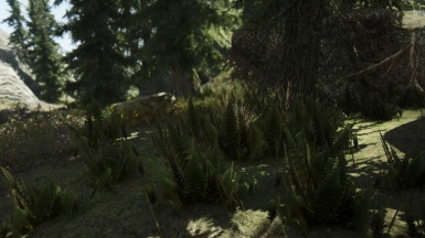 Project ENB with Pure Weather And ELFX