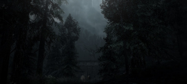 Falkreath attacked in the gloom