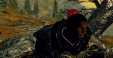 Nothing wrong just another day in Skyrim