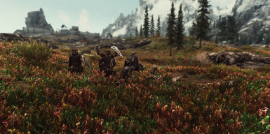 Unreal enb day with  Civil War Overhaul and Vurts Flora