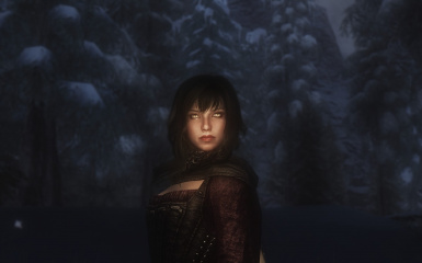 Some Dawnguard images