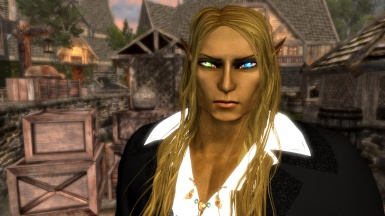 Andronicus the Bloodborn Elf