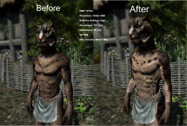 Better Beast Race Vs Better CoverKhajiits BodyTexture for Better Males
