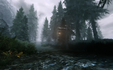 forest2