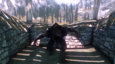 Whiterun Incident