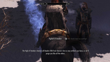 The Vigilants of Stendarr are not clever people