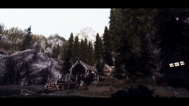First Seed ENB