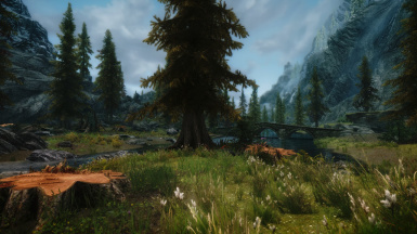 Riverwood with Seasons of skyrim and unique grasses and ground covers