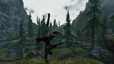 meanwhile in skyrim